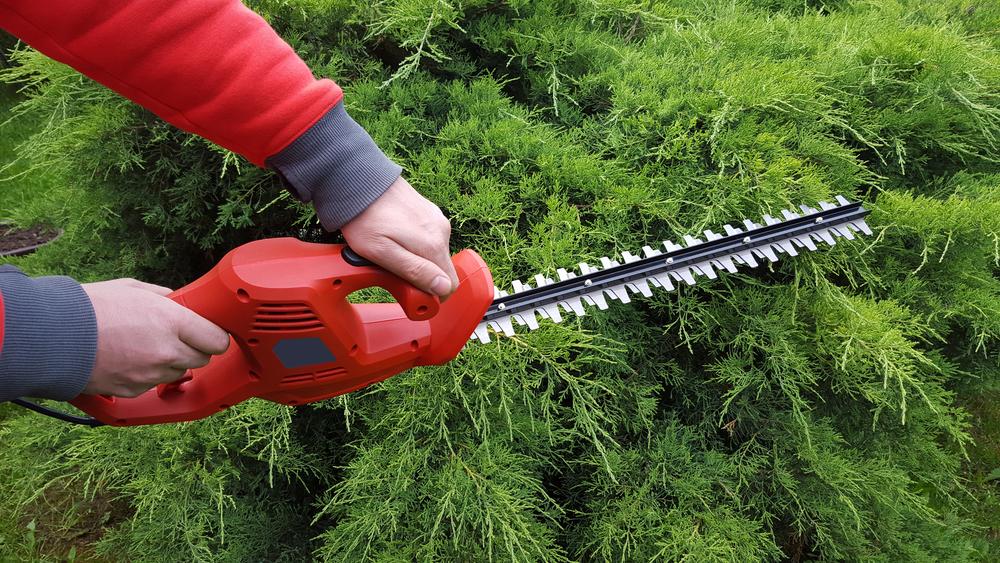 3 Tips: Landscape Maintenance, Drainage Design   E-Scapes on Landscape Drainage Design  id=68252
