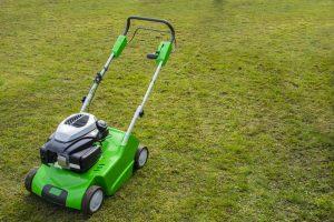 spring lawn prep