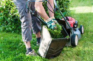 full service lawn care